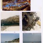 gescanntes Fotoalbum